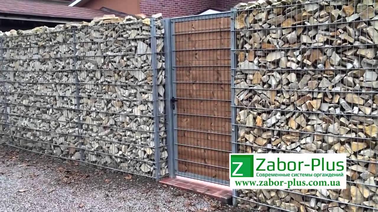 Забор из камня в сетке своими руками фото 564