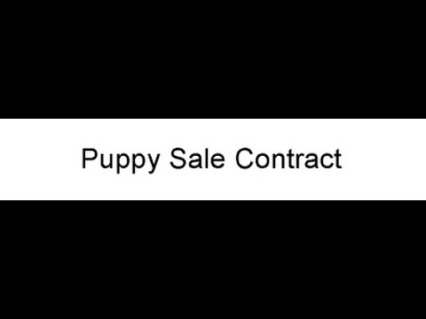Puppy Sale Contract - YouTube - puppy sales contract