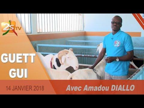 GUETT GUI DU 14 JANVIER 2018 AVEC AMADOU DIALLO