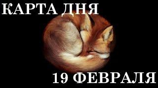 КАРТА ДНЯ 19 ФЕВРАЛЯ ТАРО ГОРОСКОП