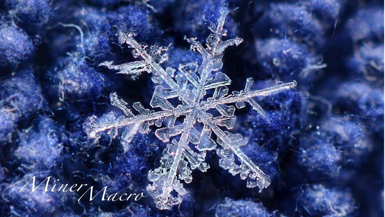 snowflake photography awesome macro photos youtube