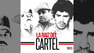 Movimiento Alterado (La Raiz Del Cartel) Top 20
