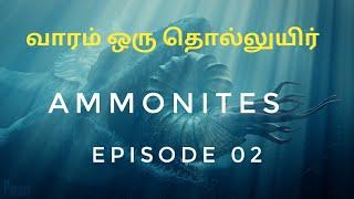 Ancient Sea Creatures  - Ammonites - Tamil - வாரம் ஒரு தொல்லுயிர்  Episode 02