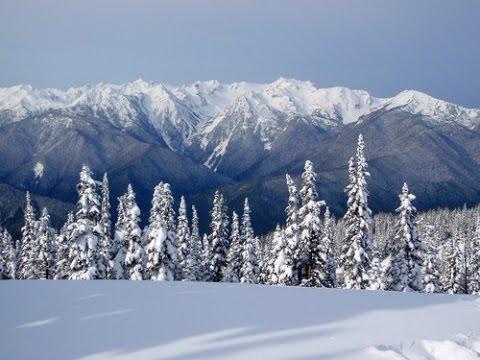 The Seasonal Sasquatch: Bigfoot and Hibernation