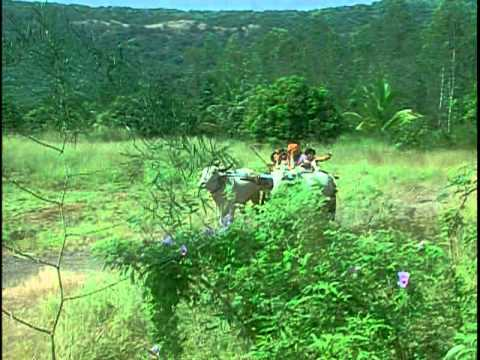 Nandi Ka Ghoonghroo Bole [Full Song] - Sant Gyaneshwar