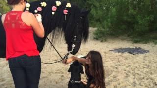 Pferde - und Menschenfotografie - Meine Zeit im Norden - Alexandra Evang Photographie
