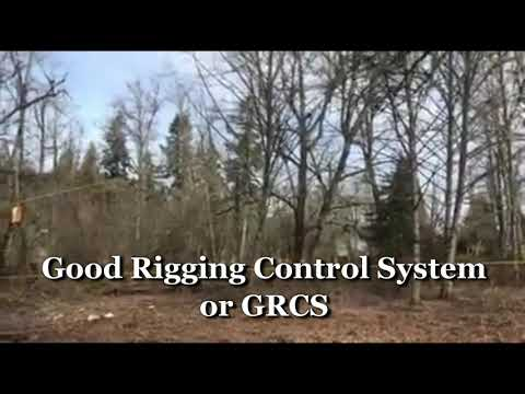 r&h-tree-service-portland-oregon-dead-alder-tree-removal