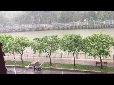 Saigon Shower