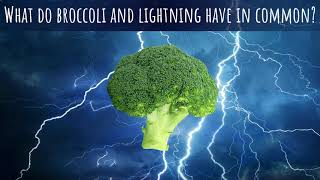 What do broccoli and lightning have in common? | Mathematigals