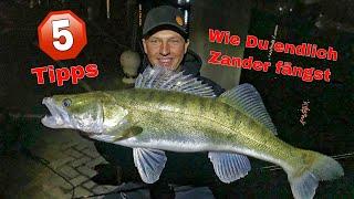 SO fängt JEDER Zander!