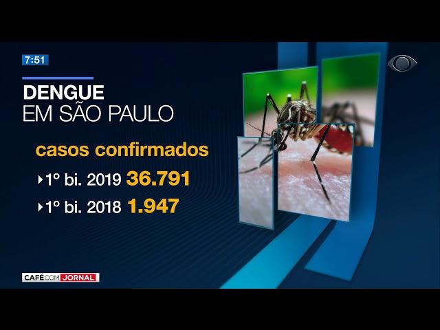 SP: Mortes por dengue quase triplicam em 2019