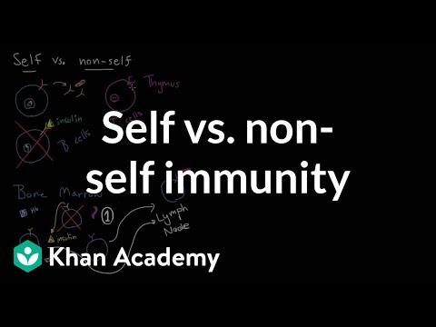 Self vs. non-self immunity | Immune system physiology | NCLEX-RN | Khan Academy