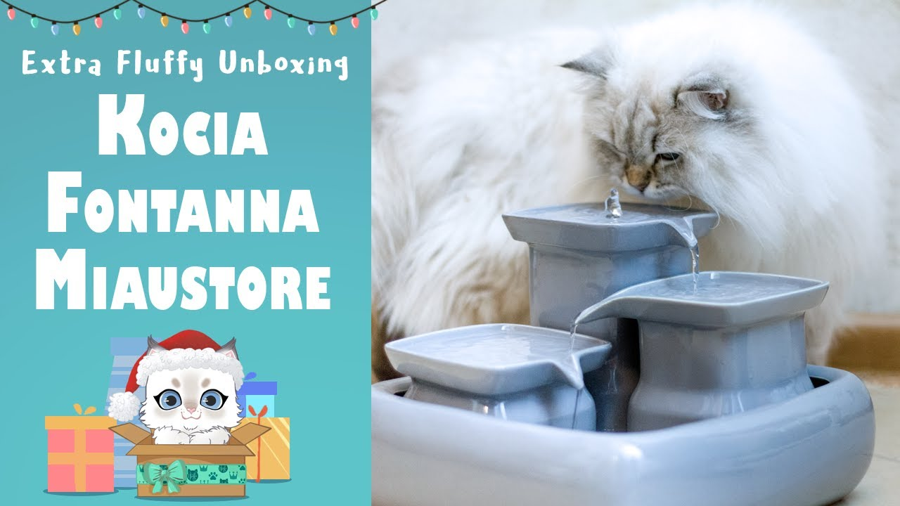 Ceramiczna fontanna dla kota Miaustore 😺 Extra Fluffy Unboxing 🎁