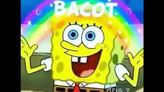 Download Video Spongebob Bacot MP3 3GP MP4