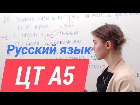 ЦТ А5. Правописание И Ы