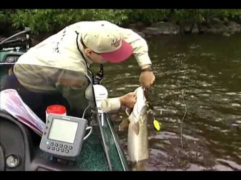 North American Fishing Club: Pike And Muskie Tactics Part 3