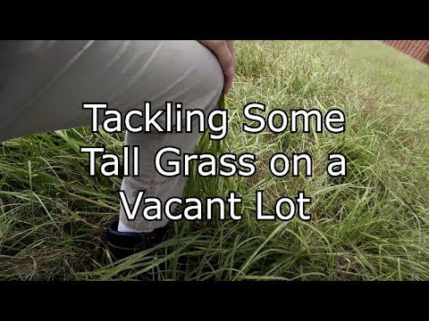 Cutting Extremely Tall Grass With Atv Mower Doovi