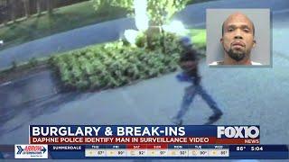 Daphne Police identify suspected car burglar
