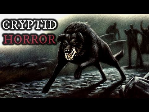 10 TRUE Scary Cryptid Stories