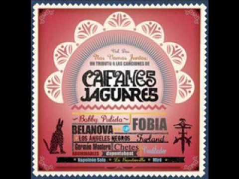 tributo a caifanes jaguares