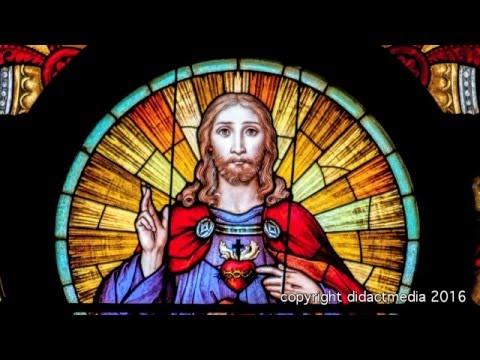 Wo der Mensch sich der päpstlichen Unfehlbahrkeit unterwirft hört gesunder Menschenverstand auf!из YouTube · Длительность: 59 мин43 с