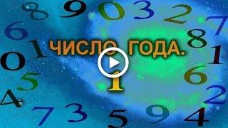 Нумерология:число года. Число 1.
