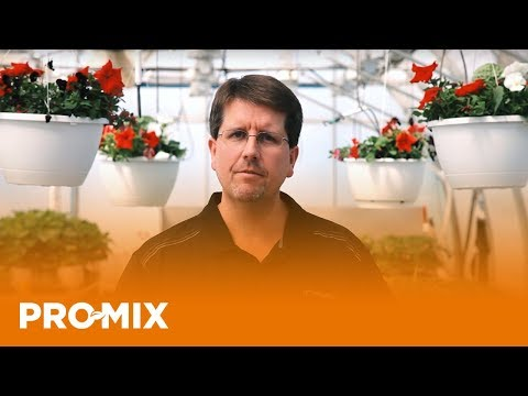 Role of Sodium and Chloride in Plant Culture