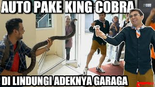 RAFFI AHMAD TAKES COCKROACH I DEFENDED MYSELF WITH KING COBRA!