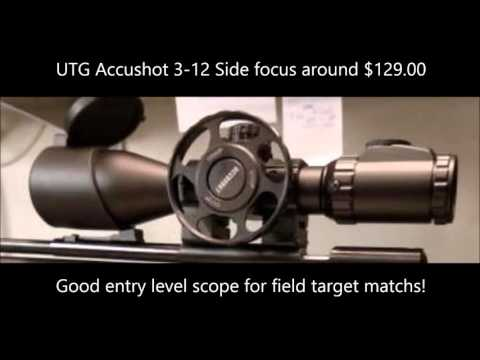 Introduction to Air Rifle Field Target