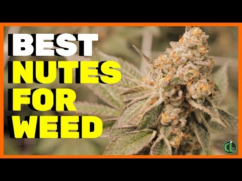 What Nutrients To Use For Cannabis Plants
