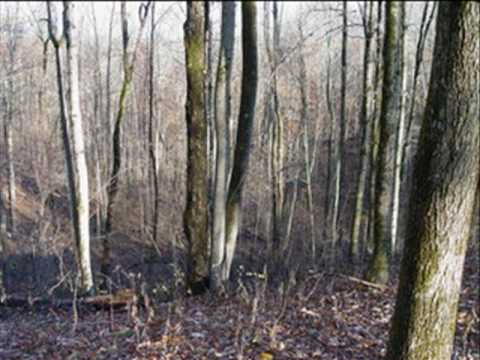 Real Estate For Sale Green Sulphur Springs, WV $175000