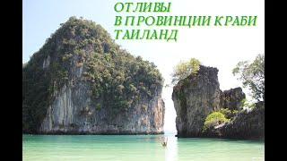 Кто живёт на дне океана Отлив в провинции Краби Таиланд Топовые места нашей планеты Рай на земле