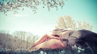 Alex Pich & Shinobi & Julius Beat - Satisfaction Love (The Orange Remix)