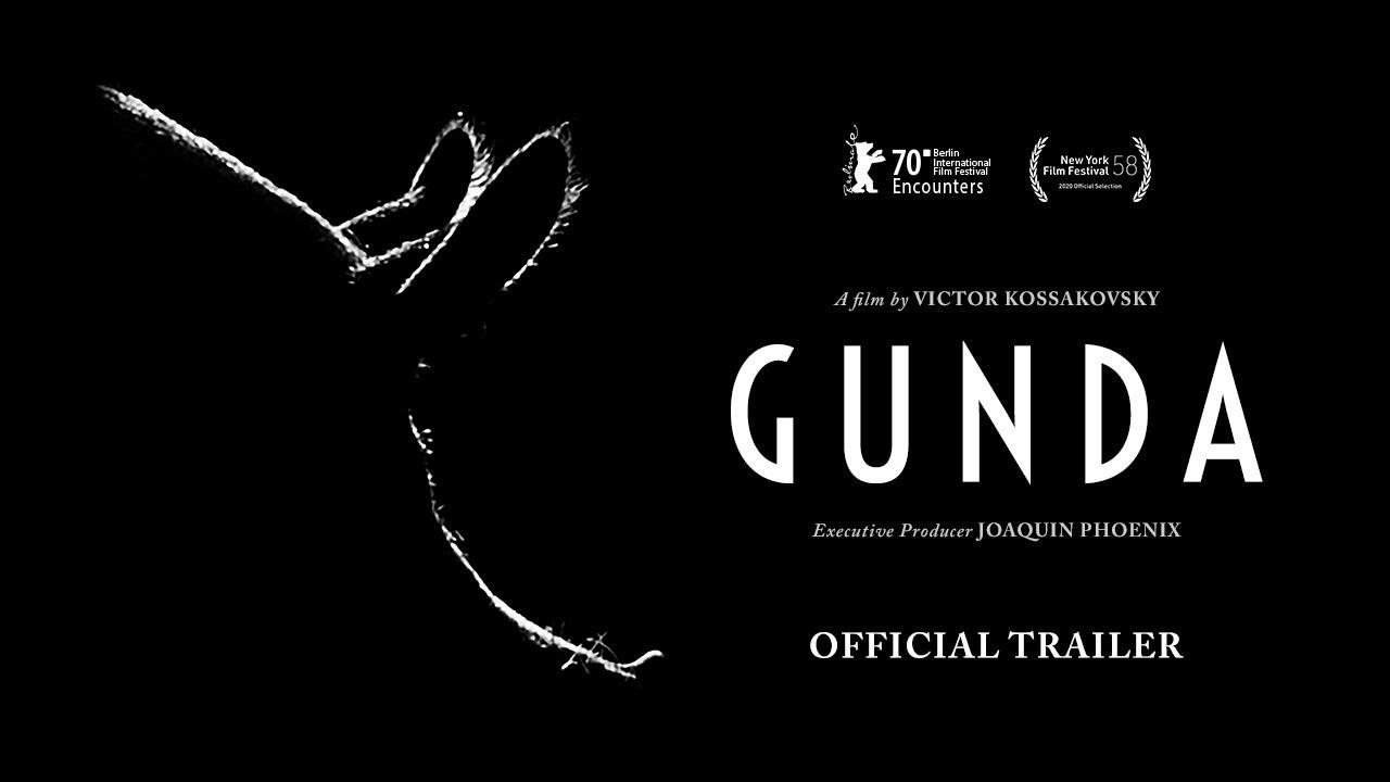 GUNDA - Official Trailer - YouTube