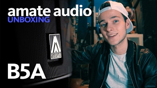 AMATE AUDIO B5A UNBOXING, FAKE CO2 AND MY CUSTOM HEARINGS | DJTIMOTHY