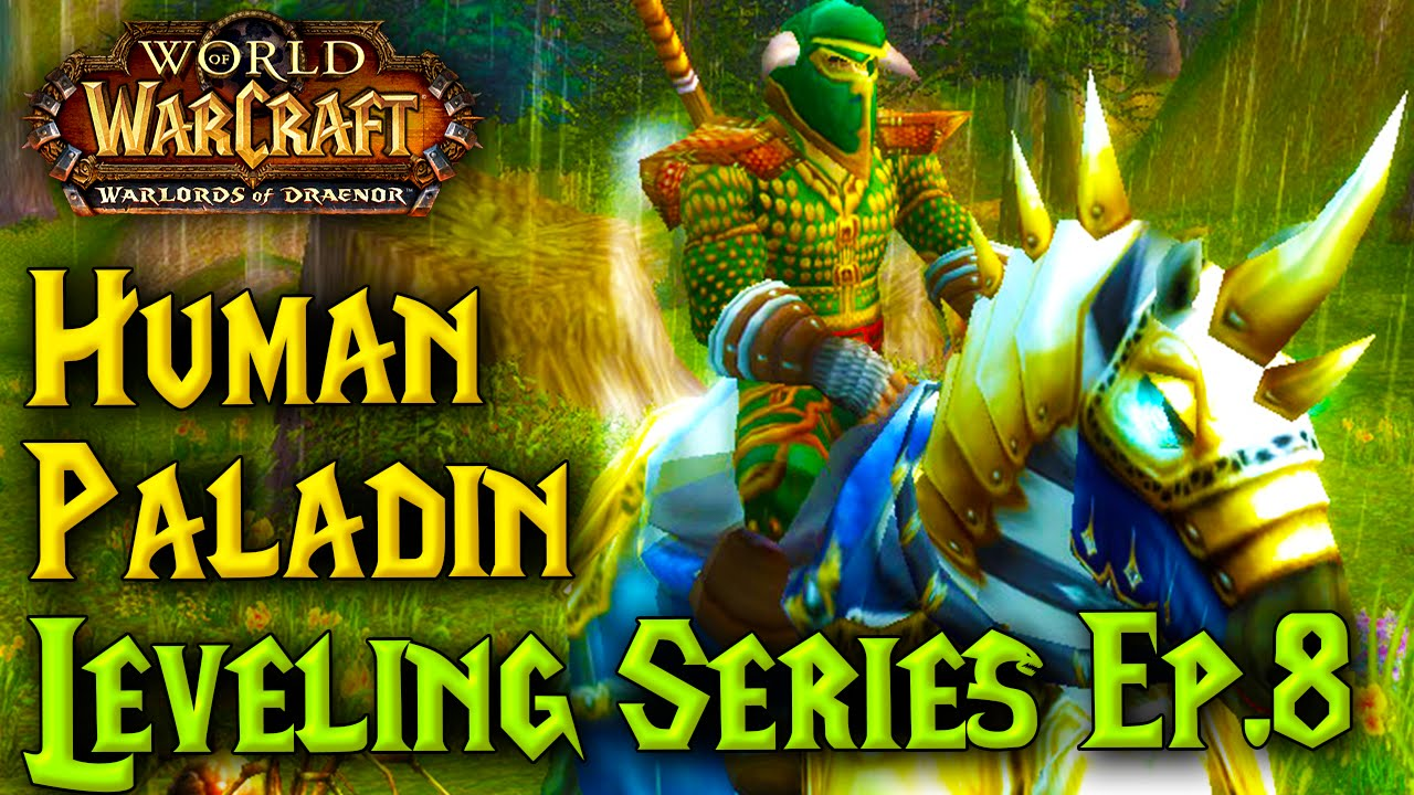 wow cata paladin leveling guide