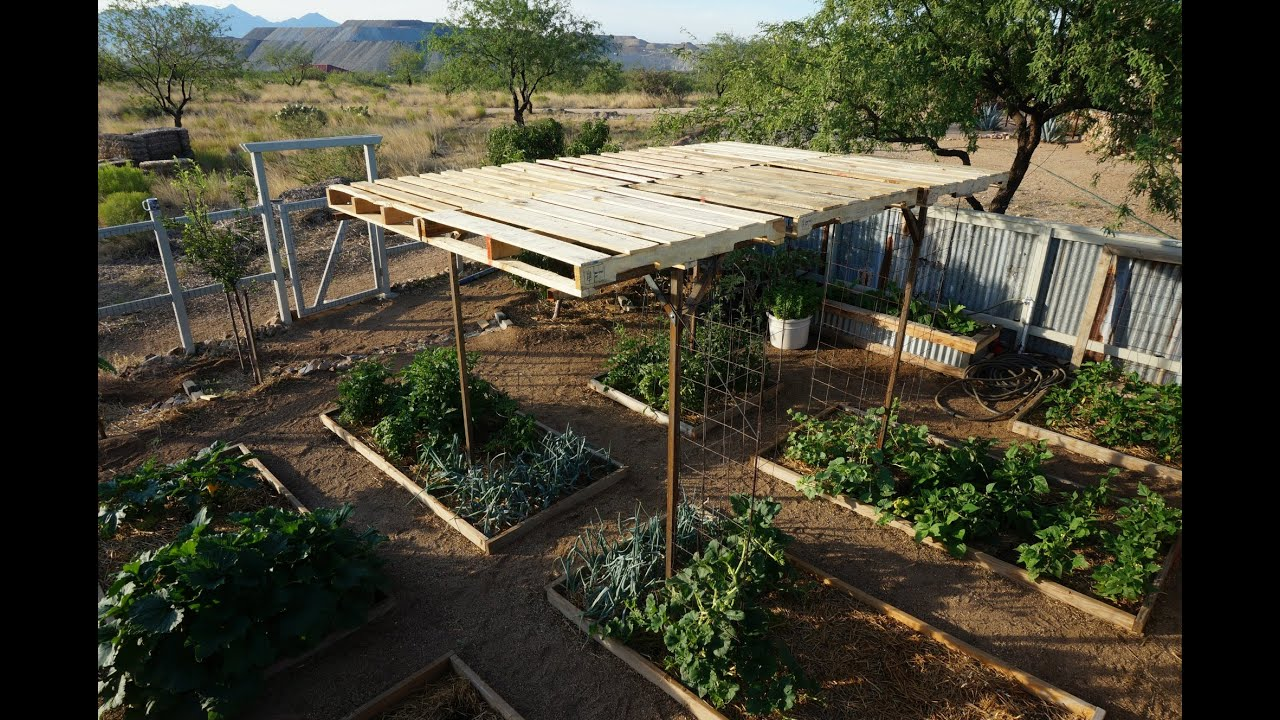 Garden Shade With Pallets Easy And Modular Pergola Youtube