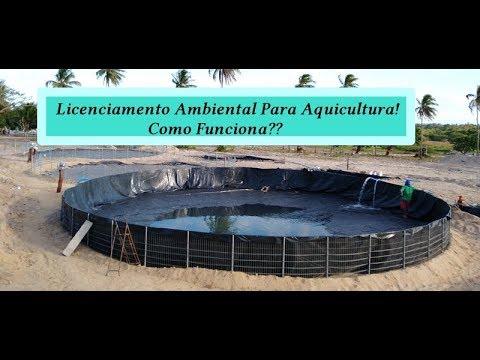 Tirar Licenciamento Ambiental Aquicultura (Peixes E Camarão)