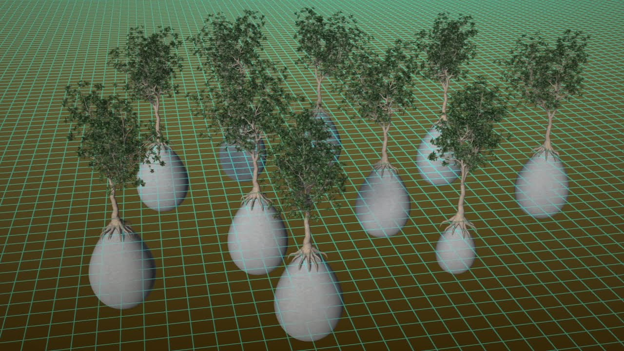 Ecological Burial Pod Turns Bodies Into Trees YouTube - Capsula mundi burial pods