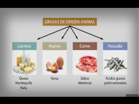 Bromatologia Composicion Y Propiedades De Los Alimentos Pdf