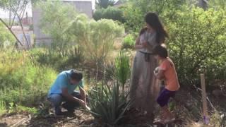 RaGarden. Farm Vistor, Amira of Las Vegas. Aloe Vera tour.