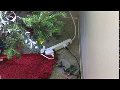 Christmas Tree Watering IoT system - Echo, Raspberry Pi, Resin.io