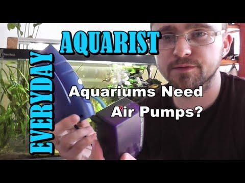 Do Aquariums Need Air Pumps?