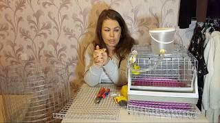 Клетка для перепелов. Как сделать? Сетка, поилка, поддон и размеры