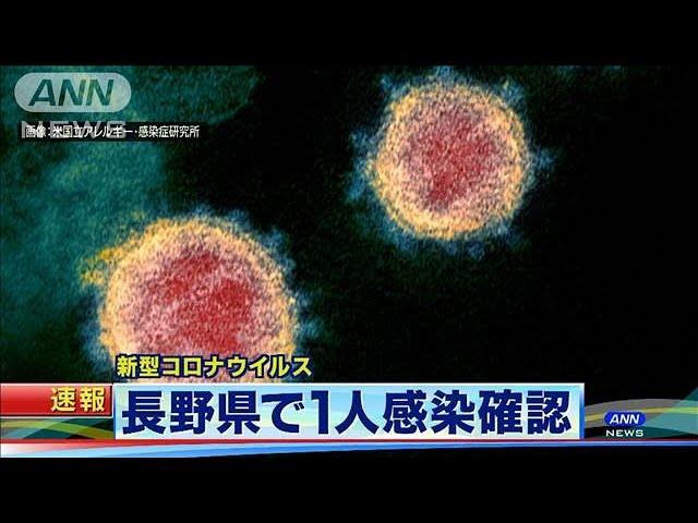 速報 ニュース 長野 県 長野県内における新型コロナウイルス感染症の動向/長野県