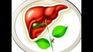 Болит печень что делать  Лечение печени  Чистка печени в домашних условиях