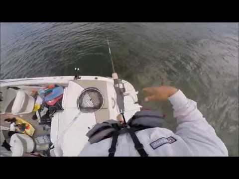 One Hand One Arm Adaptive Fishing