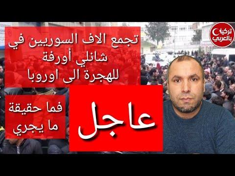 عاجل: ألاف السوريين يجتمعون في شانلي أورفة للهجرة الى اوروبا.. فما حقيقة ذلك؟