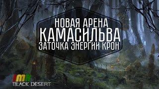 Black Desert - 27 дайджест Камасильва, новый босс шмот, арена и система заточки. Пегас и рысаки