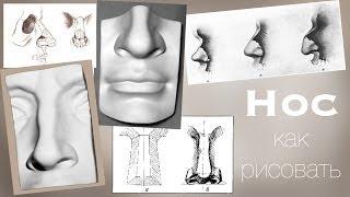 Как РИСОВАТЬ НОС карандашом / Учимся Рисовать Карандашом(В этом уроке я расскажу вам об основах построения Носа. Так же мы разберем Анатомию Носа. И конечно же будим..., 2014-02-03T14:20:10.000Z)